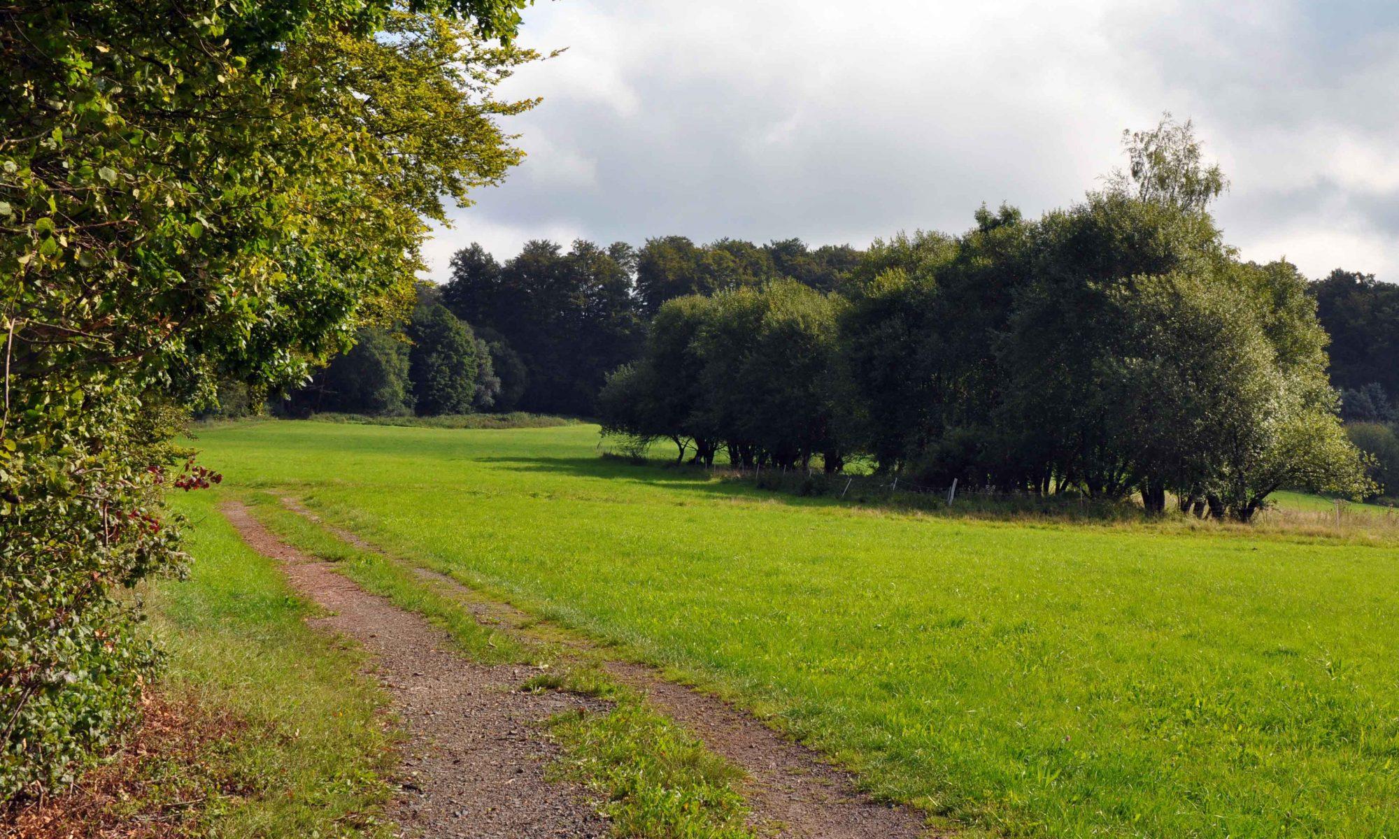 Westerwald Verein Herborn